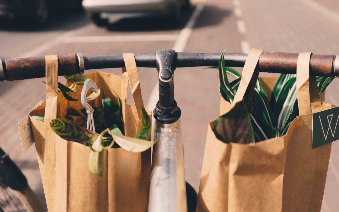 Bolsas de papel: Como ayudar al medioambiente