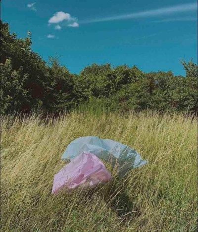bolsas de plastico- bolsas de papel kraft y a la conservación de los bosques